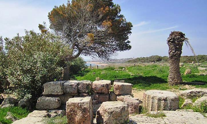 Park von Selinunte